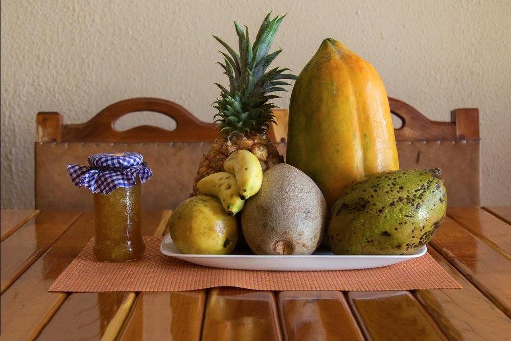 frutas-cubanas